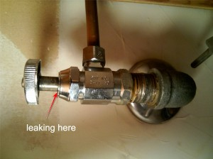 On water shutoff valves and rusty faucets « Ted and Pamela